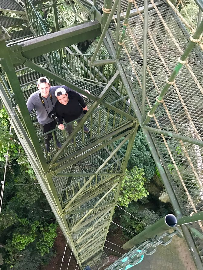 Climbing above the Amazon's Canopy