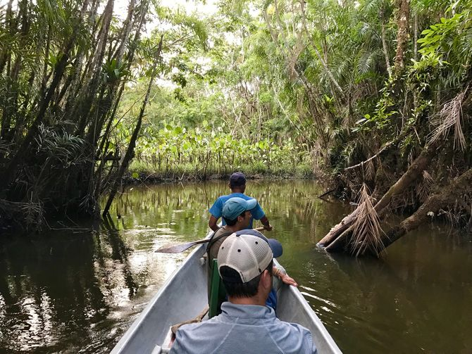 Canoeing in the Amazon Rainforest